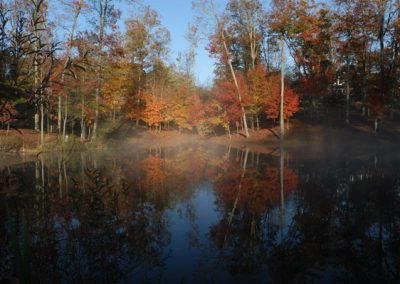 Brightly colored fall trees seen from across lake with fog on it