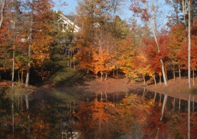 Gorgeous fall trees shielding large building across lake