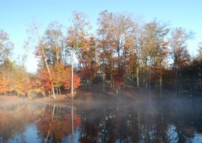 foggy lake during the fall