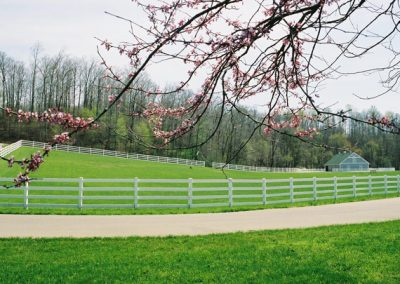 gorgeous green grounds with white picket fences
