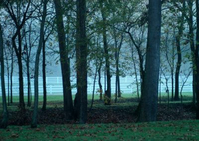 white picket fences seen through trees and fog