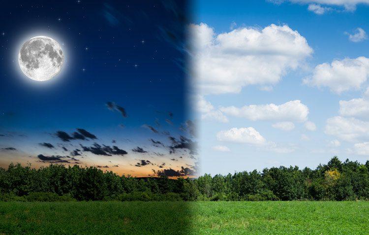 digital illustration depicting night and day using landscape